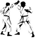 Kumite Budoshin Karate Weesp